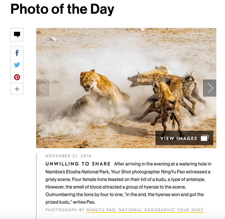 nat-geo-photo-of-the-day
