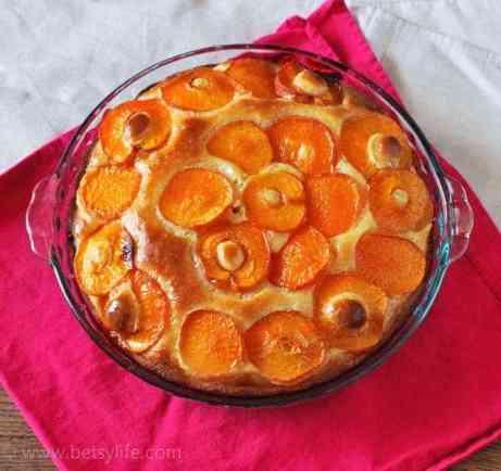 ricotta-apricot-cake-recipe
