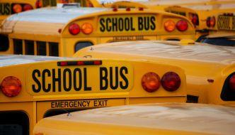school-buses2