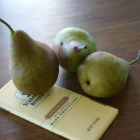 Yogurt Scones with Roasted Pears and Chocolate Chunks