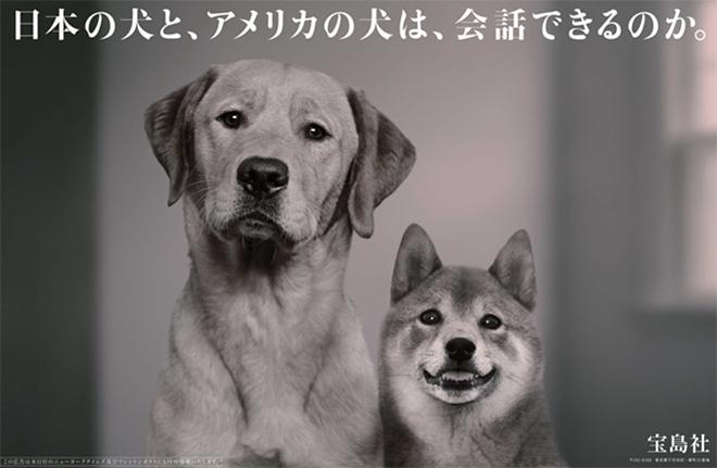 平面設計 視覺設計 日本廣告 形象廣告 廣告創意