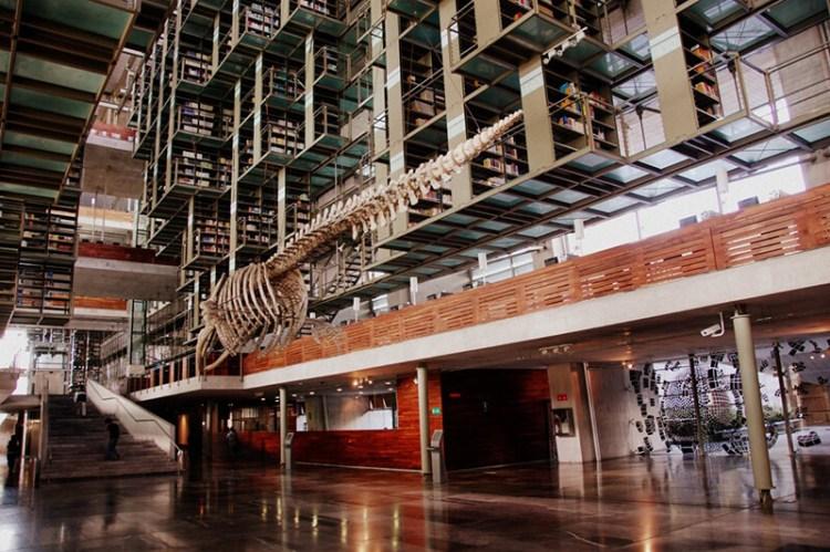 墨西哥巴斯孔塞洛斯圖書館