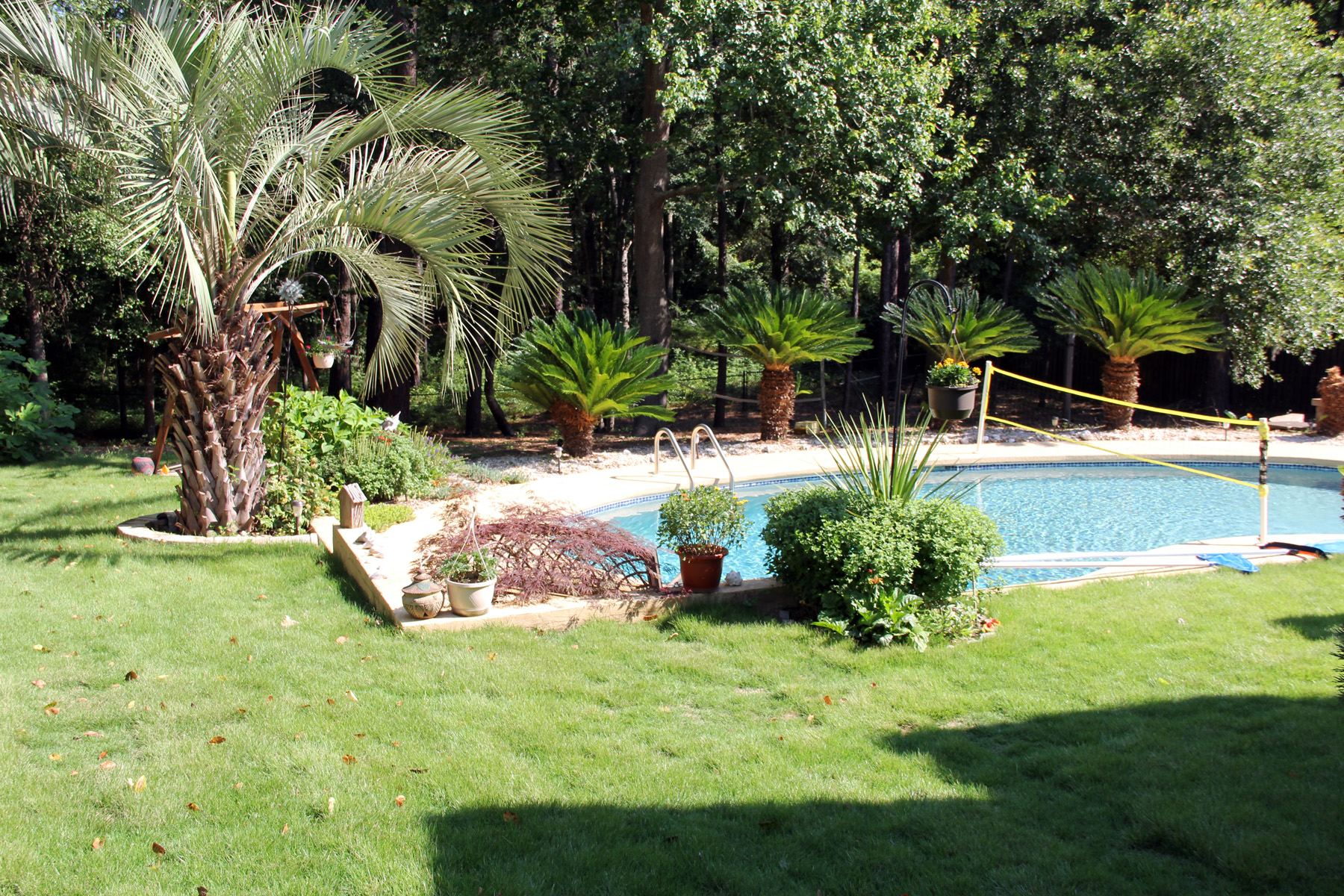 Backyard Clean Up Backyard Cleanup In North Augusta Landscaping Lawn Care And