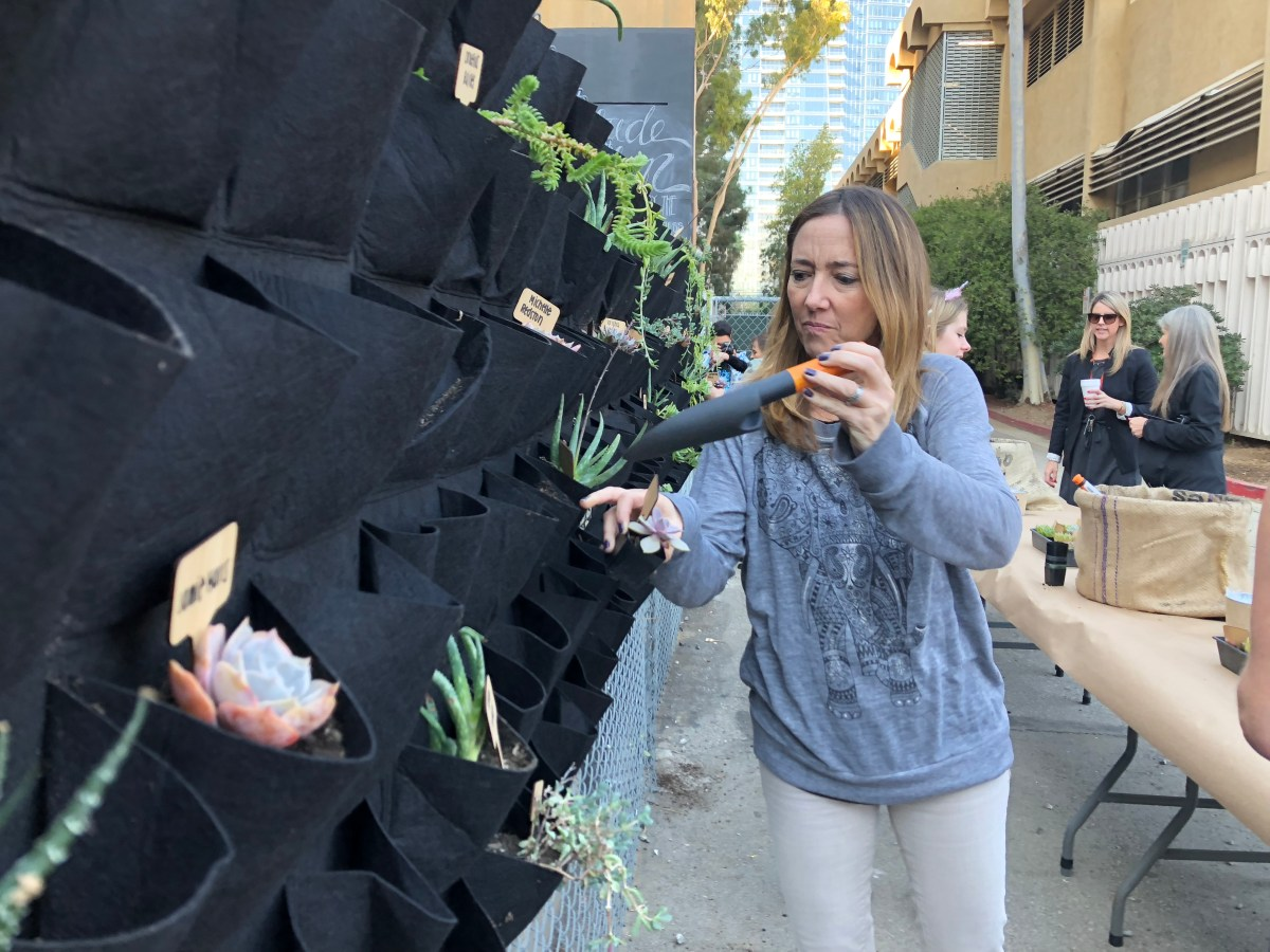 Gratitude Garden sows seeds of appreciation for faculty, campus