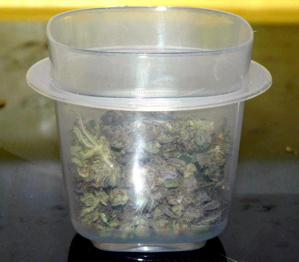 Eighth Of Weed: Ask Old Hippie: What Does An Eighth Ounce Of Weed Look Like?