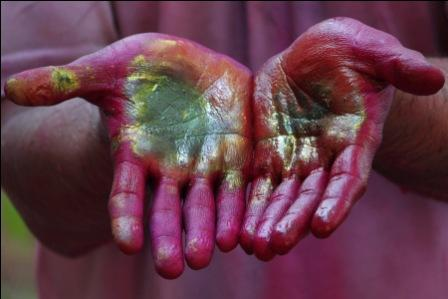 The colour of Holi