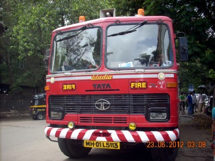 No Creature too Small to Rescue for Mumbai Fire Brigade– Not Even a Pigeon!