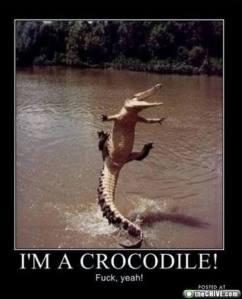 6d18e_ORIG-crocodile_
