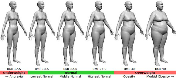 What is the BMI? Find out your number and what it means \u2013 Bellisima - 33 bmi