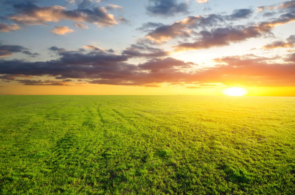 The Yellow Wallpaper Analysis Quotes Advance Terrafund Sells Another 1 069 Dca Of Farmland In