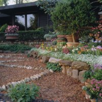 A Family Backyard Landscape Plan | Better Homes & Gardens