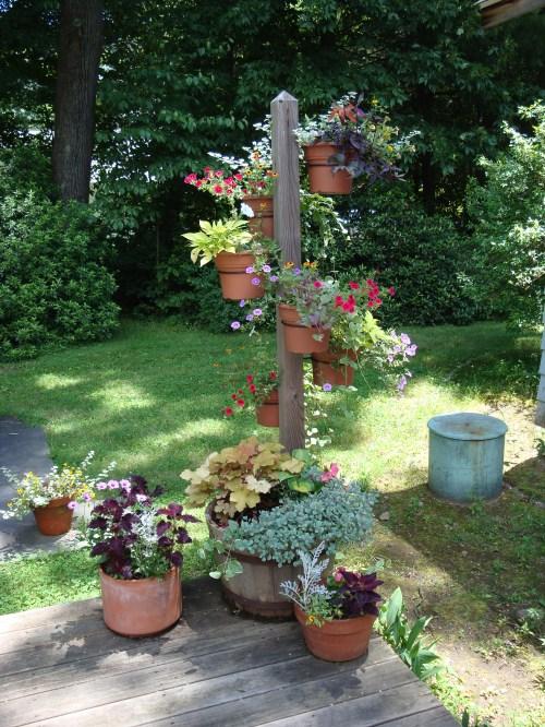 Medium Of Planter Gardening Ideas