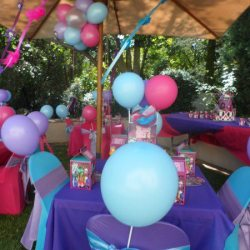 Themed Birthday Party Supplies