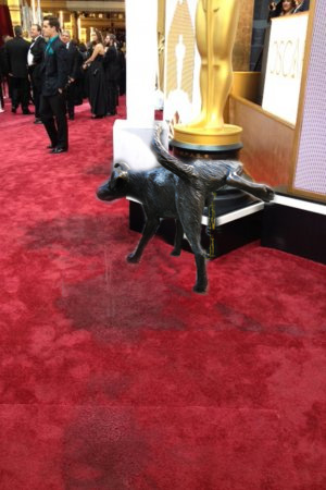 Stray Dog Sniffs Jared Leto, Pees on Red Carpet at 2015 Oscars