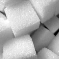 Glucose Tolerance Testing (GTT)