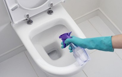 Best Toilet Bowl Cleaner Reviews