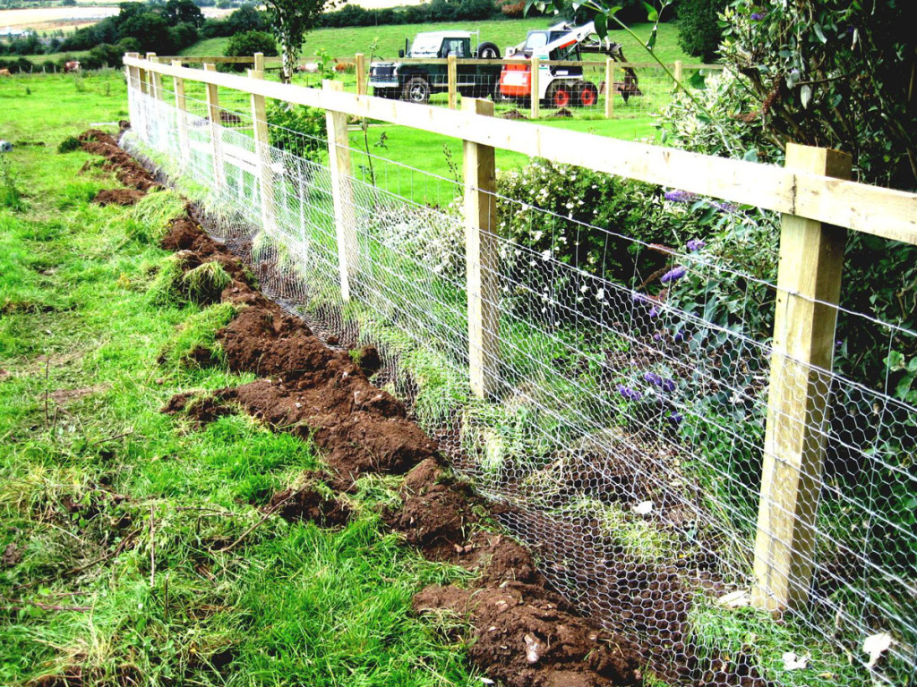 Wire Fencing Welded Wire Fencing Fencing Contractor Jacksonville Fl Nc