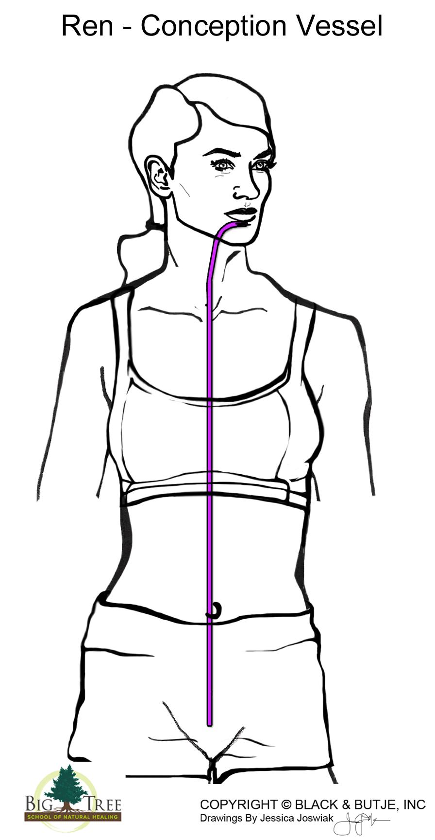 diagram of cramps