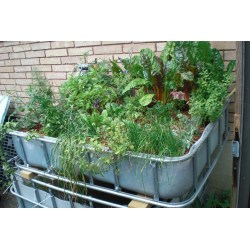 Small Crop Of In Home Garden System