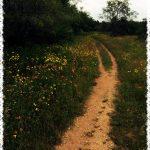 Austin-Texas-Bike-Trail