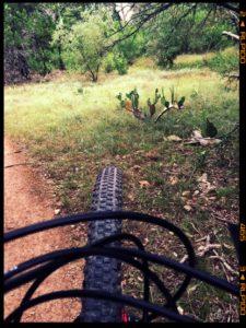 Beat Jet-Lag Texas-Biking-Trails