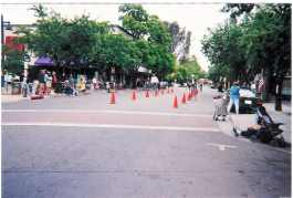 Davis Race First -