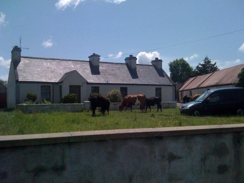 Irish Lawnmowers