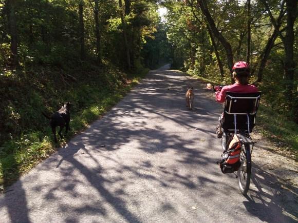 Escorts on Whistle Creek