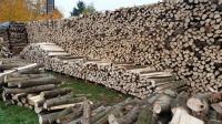 Baumaterial Holz & Metall (Bau- und Heimwerkerbedarf ...