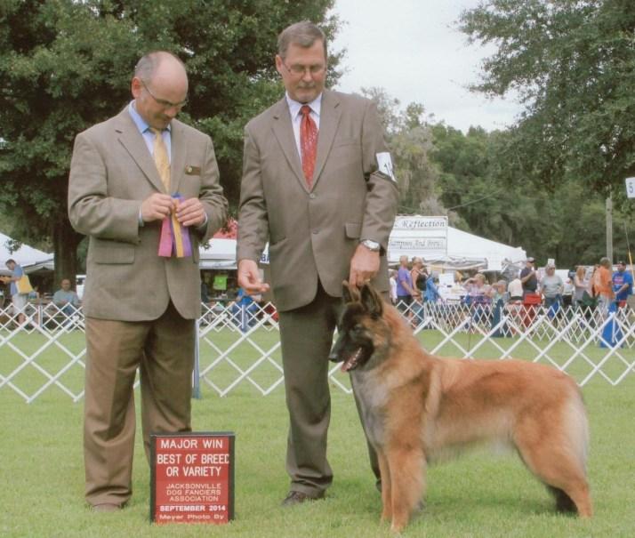 Iisa Best of breed Major 9-2014