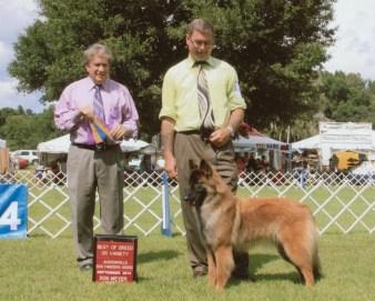 Ocala 2014 Best of breed 001