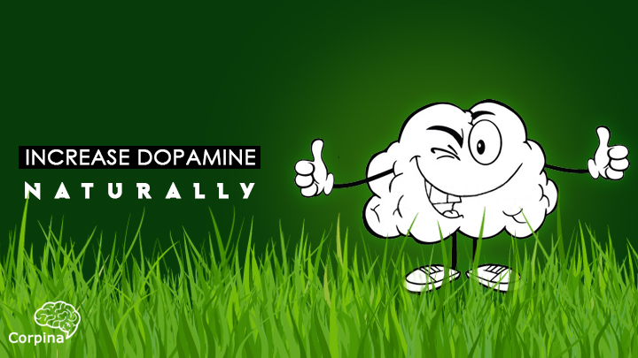 Top Way to Increase Dopamine Naturally