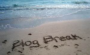 Blog break