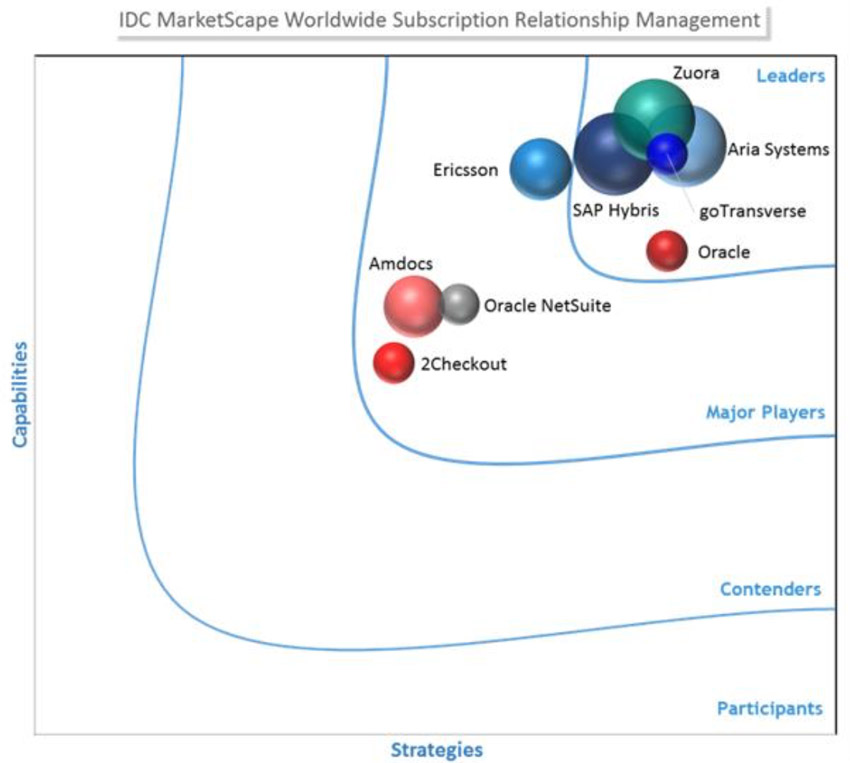 A Leader in Subscription Relationship Management