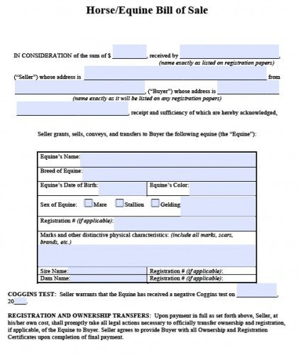 Free Horse\/Equine Bill of Sale Form PDF Word (doc) - bill of sale word doc