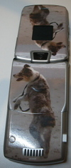Personalizing Your Cellphone or iPod