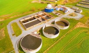 bioeconomia-biomasa