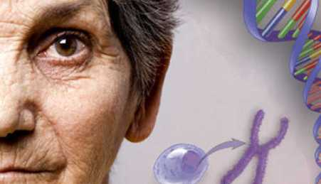 The role DNA methylation plays in aging cells