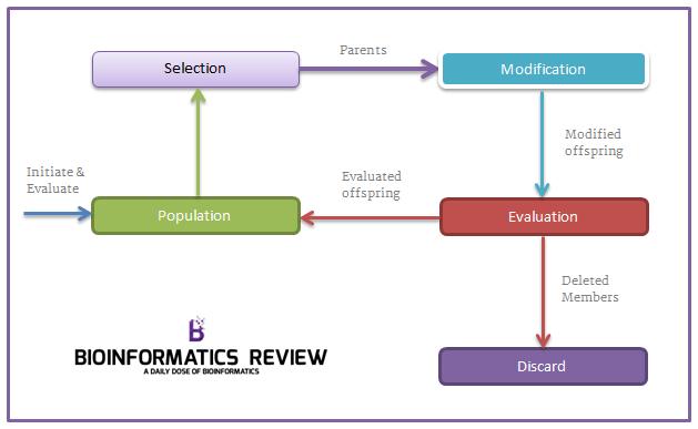 algorithm astrophysics genetic thesis