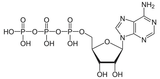 diagram of ribose deoxy