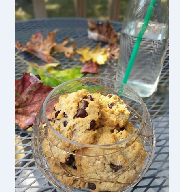school lunch bag chocolate chip cookies