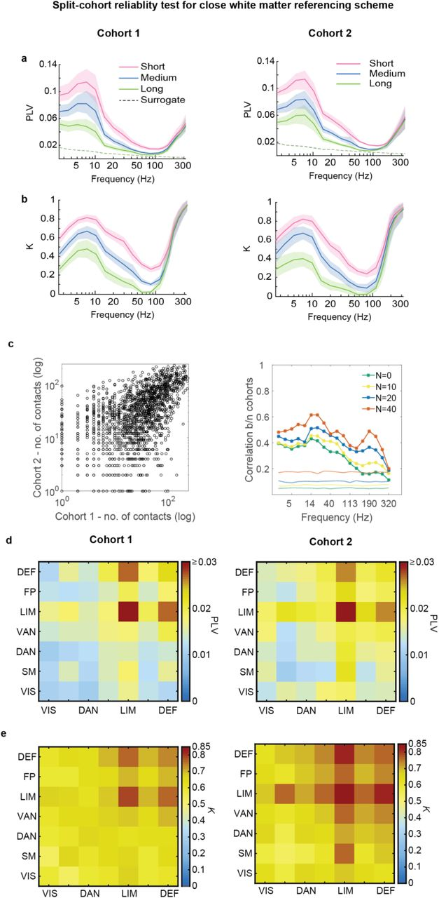 Gamma Split Long Range Phase Synchronization Of High Gamma Activity In Human