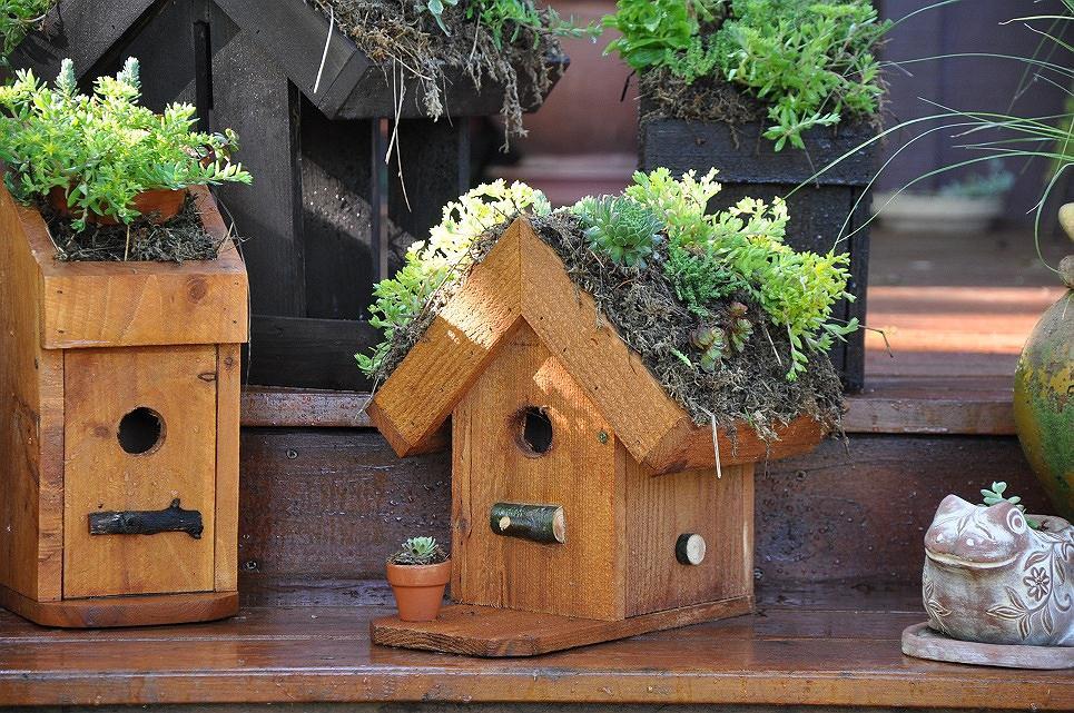 Bird Houses Decorating Ideas Birdcage Design Ideas