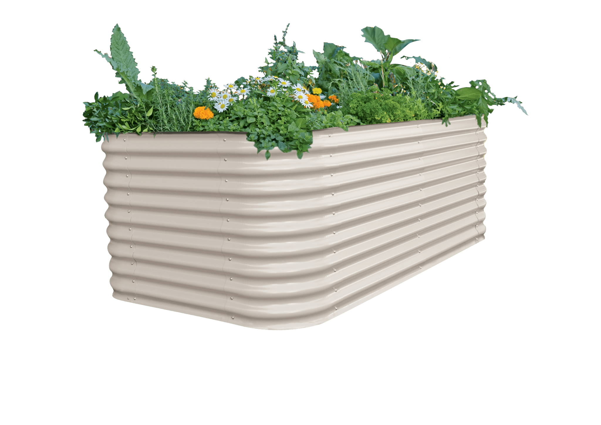 Colorbond Raised Garden Beds Stratco Colorbond Raised Garden Beds Newcastle Garden Ftempo