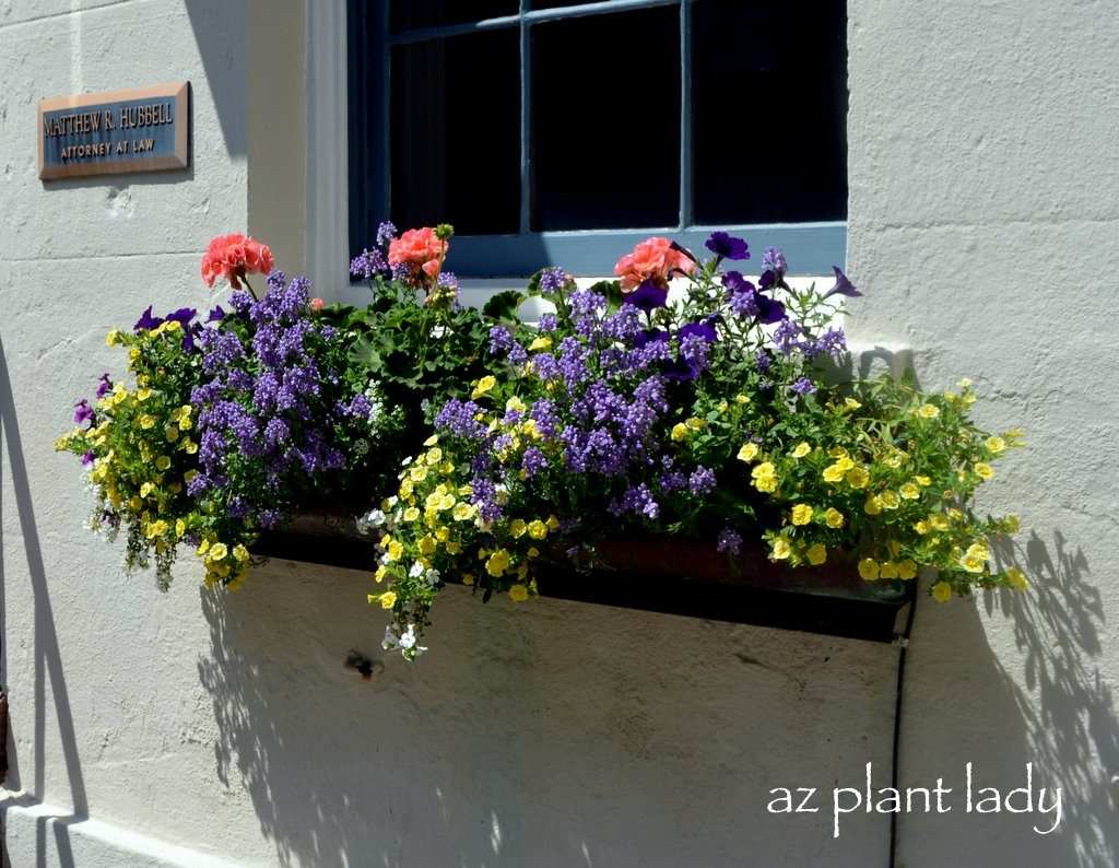Balkonblumen Ideen Window Box Planters Of Charleston, Sc - Birds And Blooms