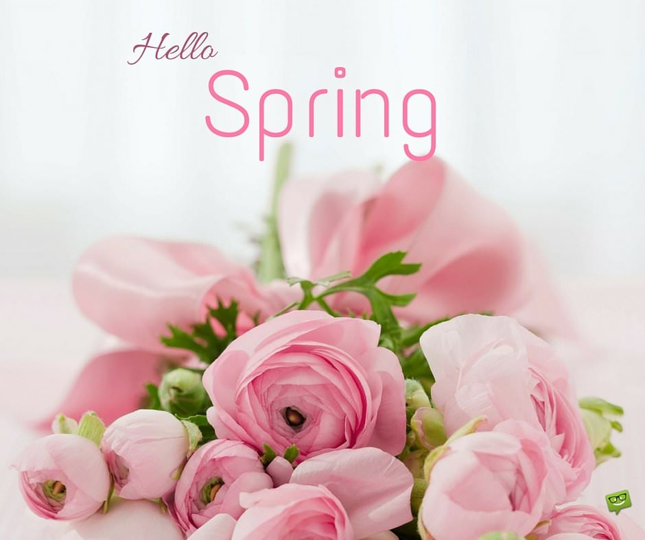 "Birthday Wishes Expert Good Morning ""hello, Spring!"" Quotes"