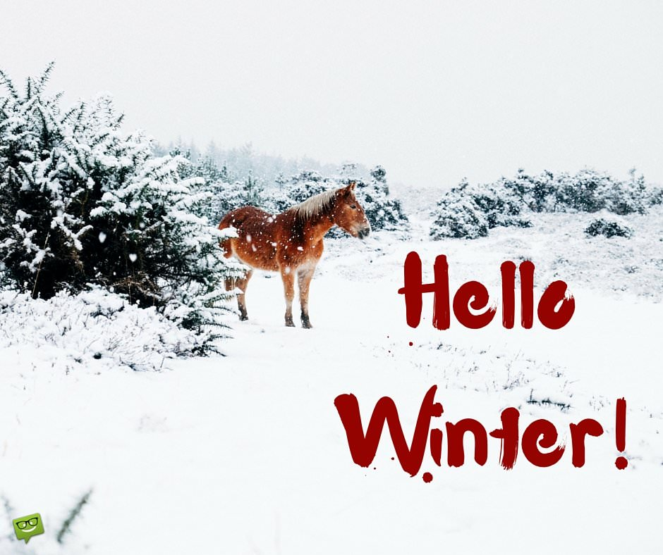 Birthday Wishes Expert Good Morning Hello, Winter! Quotes And Images To Share