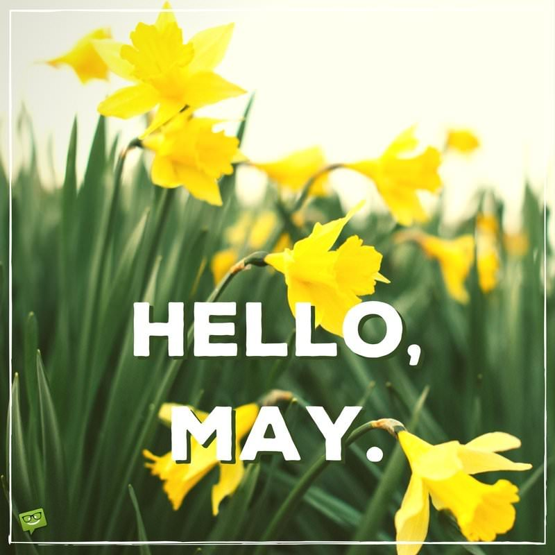 Birthday Wishes Expert Good Morning Hello, May | Quotes About Spring In Bloom