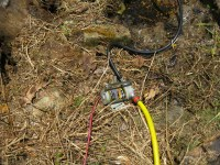 WATER PUMP GARDEN HOSE : WATER PUMP - AUTOMOTIVE ELECTRIC ...