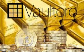Interview with Vaultoro